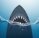 Shark in the blue sea background vector Stock Photo