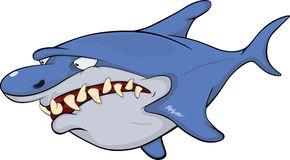 Shark. Cartoon. Hungry predatory fish. The monster. A shark Royalty Free Stock Images