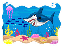 Shark cartoon Stock Images