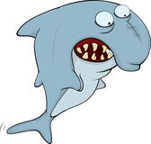 Shark. Cartoon Stock Photos