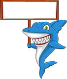 Shark cartoon with blank sign Royalty Free Stock Photography