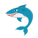 Shark cartoon Stock Photos