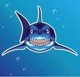 Shark Cartoon Royalty Free Stock Photos