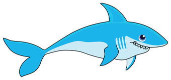 Shark. The shark cartoon illustrations on a white background Stock Image