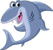 Shark cartoon smiling Stock Photo