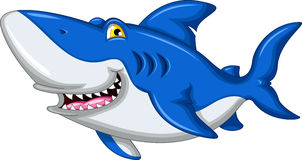 Shark cartoon smiling Stock Image