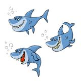 Shark cartoon. Cartoon shark in three poses Royalty Free Stock Photos