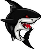 Shark cartoon for you design Royalty Free Stock Photo