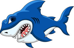 Shark cartoon for you design Stock Images