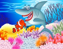 Shark and clown fish Royalty Free Stock Photo