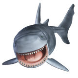 Shark 3d Royalty Free Stock Images