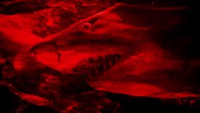 Shark Dangerous Terror Blood Abstract