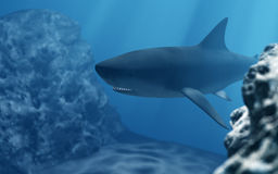 Shark diving in deep sea Royalty Free Stock Photo