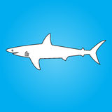 Shark. The drawn vector image of a shark Royalty Free Stock Images