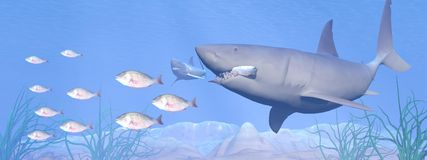 Shark eating - 3D render Royalty Free Stock Image