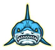 Shark face mascot Stock Image