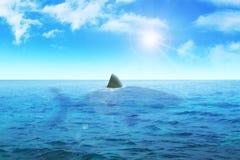 Shark Fin. Illustration of a shark in deep blue sea Stock Photos