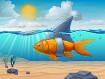 Shark fin. Golden fish wearing a shark fin. Digital illustration Royalty Free Stock Photos
