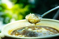 Shark fin hot soup in the bowl with spoon at restaurant. The sha stock photo
