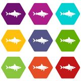 Shark fish icon set color hexahedron. Shark fish icon set many color hexahedron isolated on white vector illustration Royalty Free Stock Photos