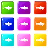 Shark fish icons 9 set. Shark fish icons of 9 color set isolated vector illustration Royalty Free Stock Images
