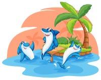 Shark fish on island. Illustration of shark on island on a white background Stock Image
