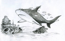 Shark and fishes. Big shark and a group of small fishes following it an the coral reef. Pencil drawing, sketch Stock Image