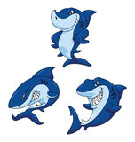 Shark Funny Cartoon Royalty Free Stock Image