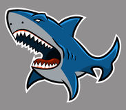 Shark. Is great for icon or mascot Royalty Free Stock Photos