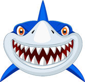 Shark Head Cartoon Stock Image