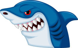 Shark head mascot cartoon Stock Photography