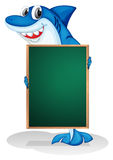 A shark holding an empty board. Illustration of a shark holding an empty board on a white background Stock Photos