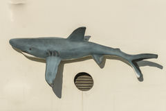 Shark on a house wall royalty free stock photo