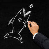 Shark hunting little fish acquisition concept. Businessman drawing shark hunting little fish with chalk on blackboard - acquisition, challenge or danger concept royalty free stock images
