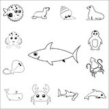 shark icon. Detailed set of sea animal outline icons. Premium quality graphic design icon. One of the collection icons for website Royalty Free Stock Photo