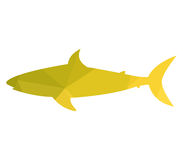 Shark icon illustrated. On a white background Royalty Free Stock Images