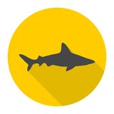 Shark icon with long shadow. Vector icon Stock Image
