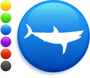 Shark icon on round internet button Stock Images