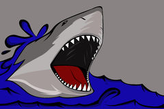 Shark. Illustration of a shark with a sharp teeth Royalty Free Stock Photography
