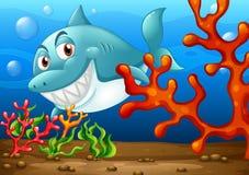 Shark. Illustration of a shark under the ocean stock illustration