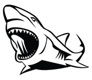 Shark. Illustrator desain .eps 10 Stock Illustration