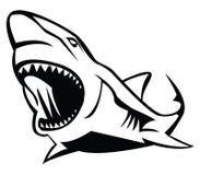 Shark. Illustrator desain .eps 10 Royalty Free Stock Images