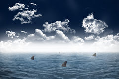Shark infested sea under dark sky Stock Photos
