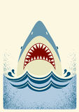 Shark jaws.Vector color illustration Royalty Free Stock Image