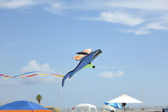 Shark kite at the beach Royalty Free Stock Photo