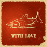Shark. Label with a picture of a shark and the text Royalty Free Stock Images