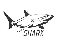 Shark logo in black isolated on white. Graphic design wild animal, vector illustration Royalty Free Stock Photography