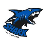 Shark logo template. With color blue for your logo Stock Photos