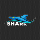 Shark logo Vector illustration royalty free stock images