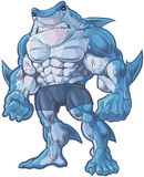 Shark Man Vector Cartoon Illustration. Vector cartoon clip art illustration of a muscular, tough, and mean looking anthropomorphic half shark, half man hybrid royalty free illustration